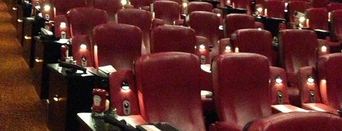 linden multiplex cinemas job application