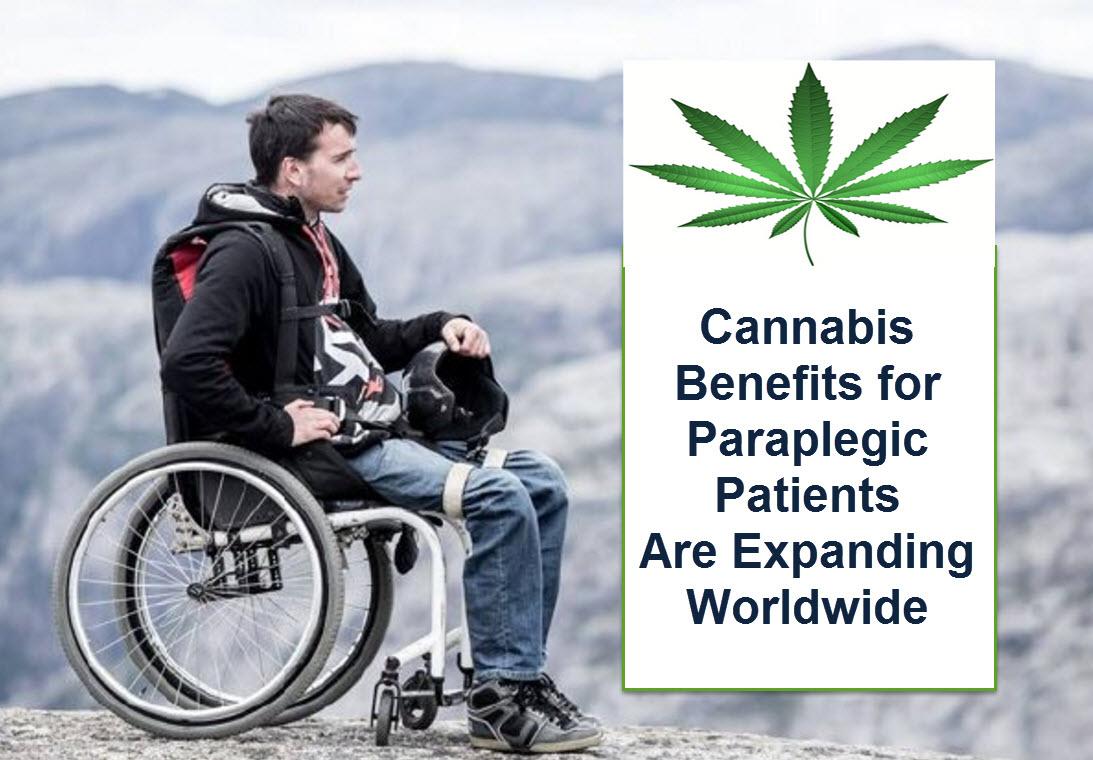 where to send a medical cannabis application