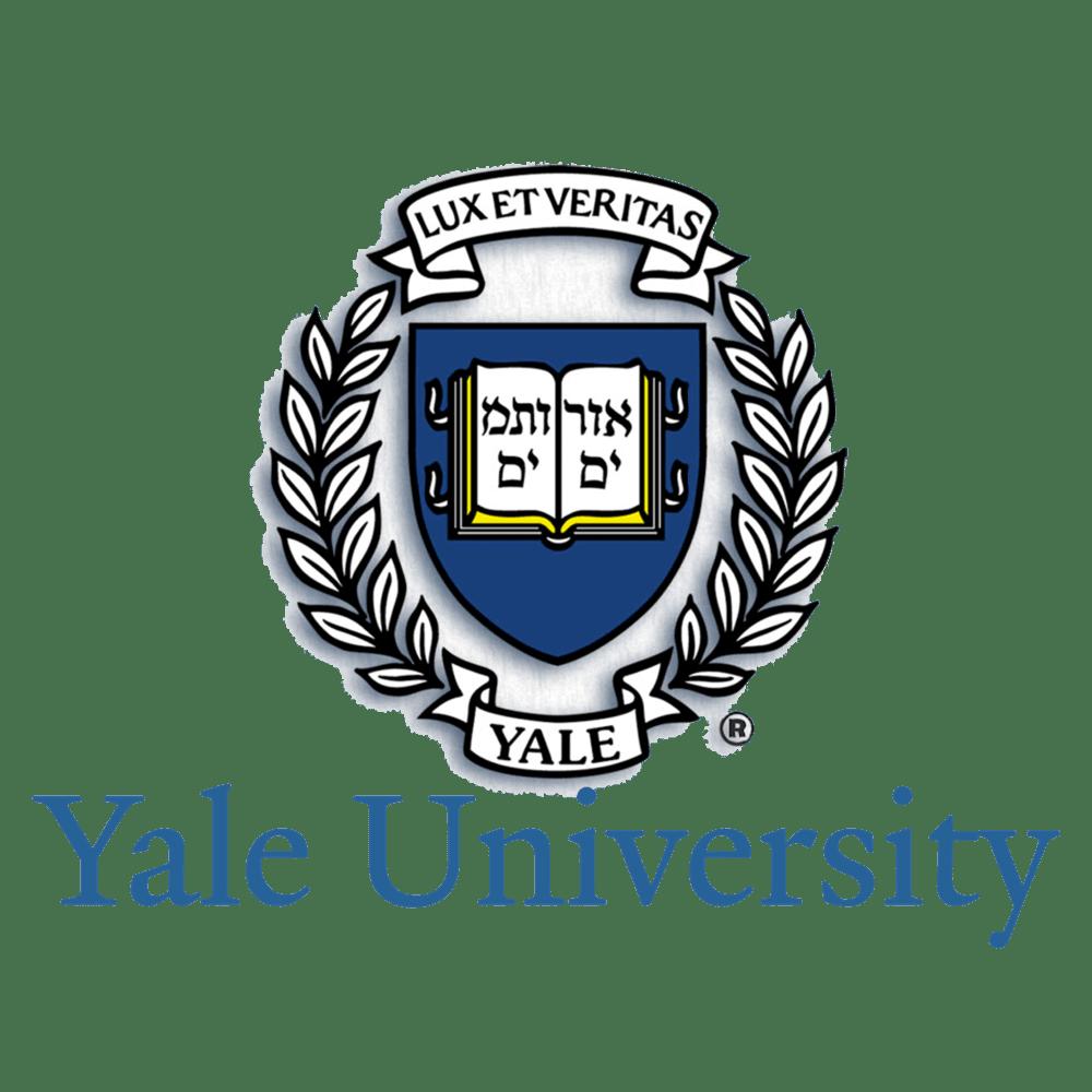 yale university llm application deadline