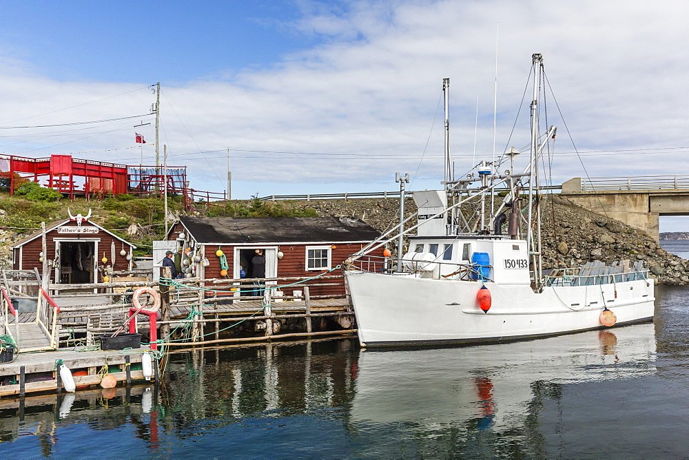 newfoundland online fishing lisence application