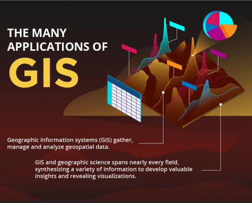 canadian application form for gis