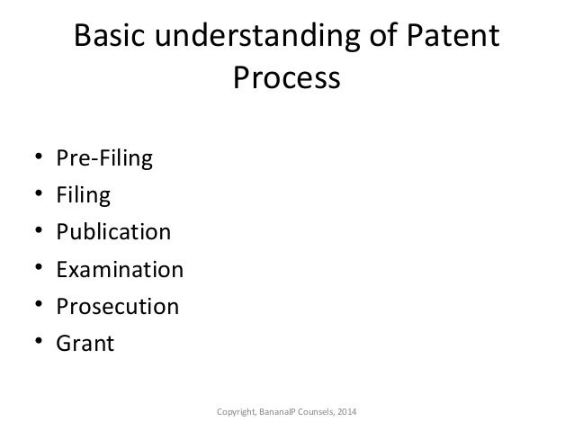 provisional patent application rather than a disclosure document