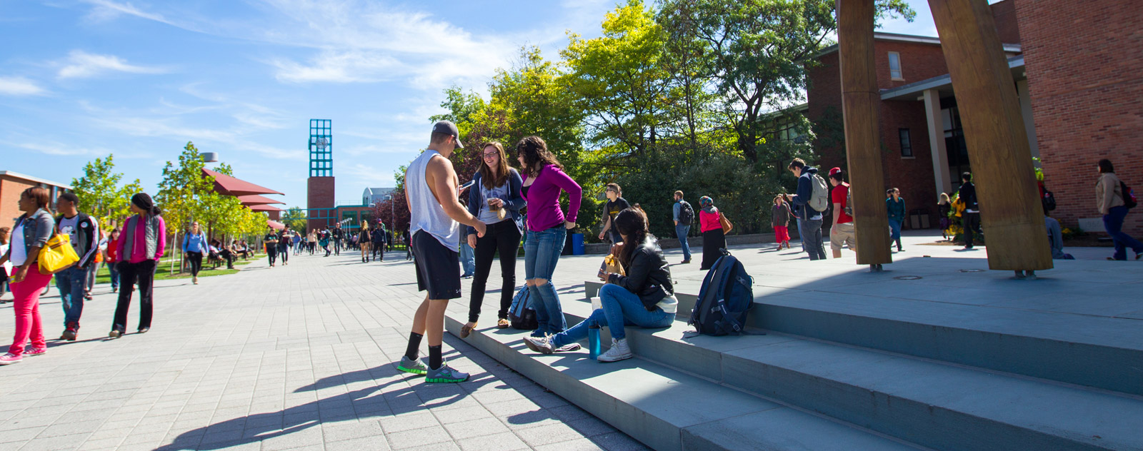 the sfu undergraduate admissions office will not accept late applications