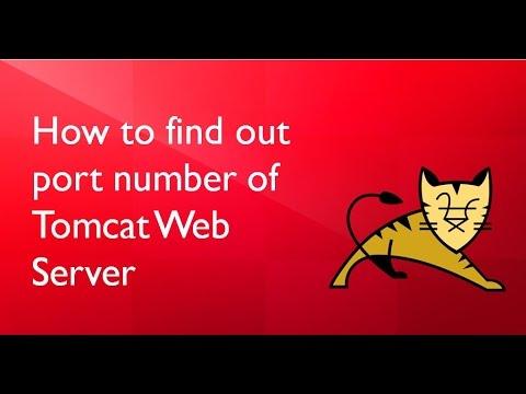 host a web application find the port number