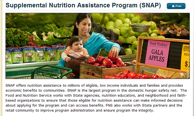 texas food stamp application by mail