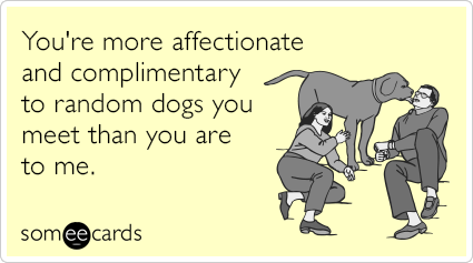 do more with your dog application