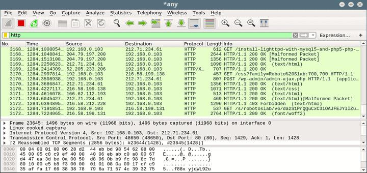 wireshark monitor all application traffic