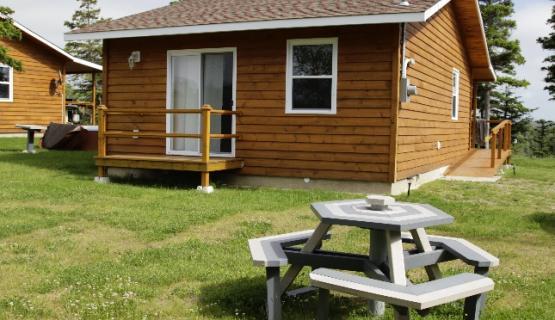 newfoundland and labrador sa camp application