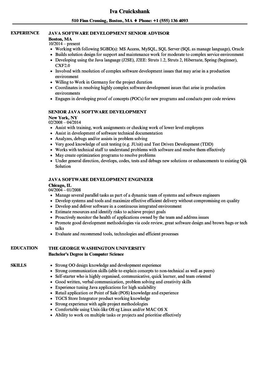 java web application development resume