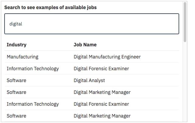 ibm employment application form pdf