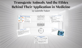 transgenic animal and their application