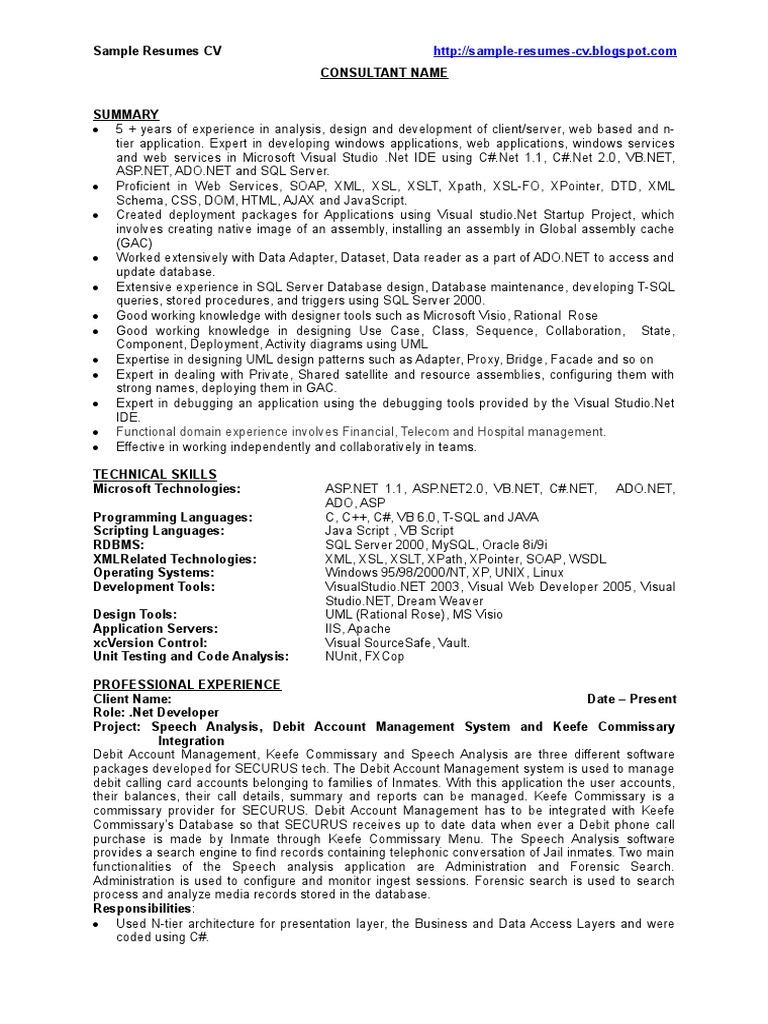 web application developer resume summary