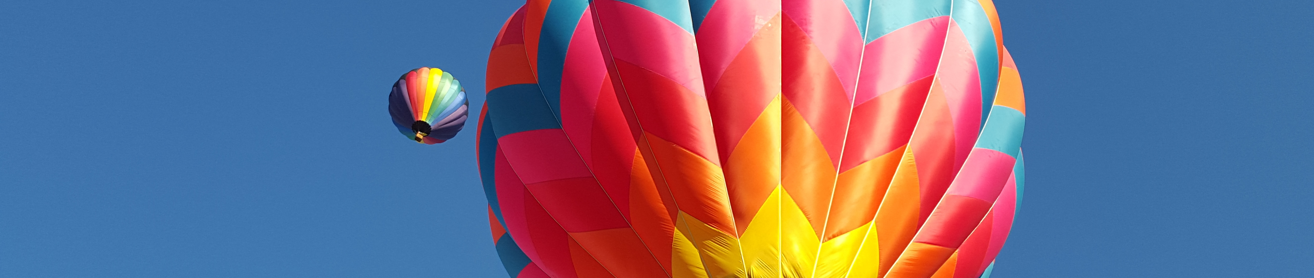 atlantic balloon fiesta application craft fair