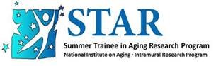 statoil summer internship application process