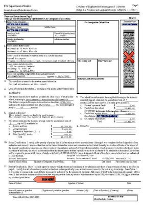 us department of state electronic visa application form