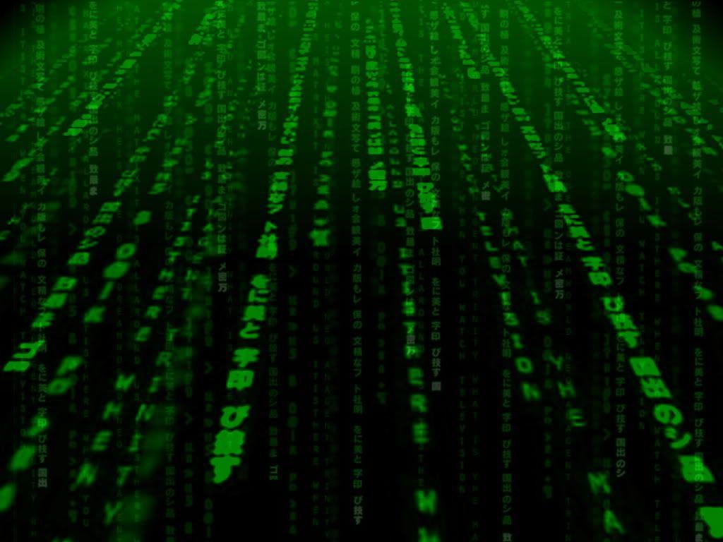 hacker handbook web application 2