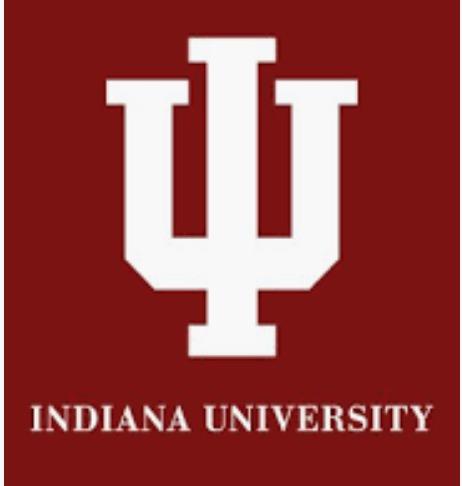 ubc ib gap year application
