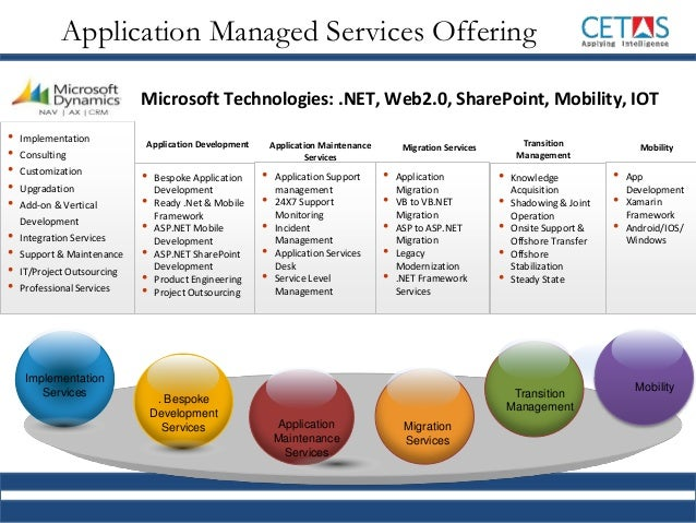 application development and support services