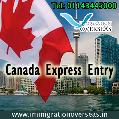 canadian pr application fees express entry