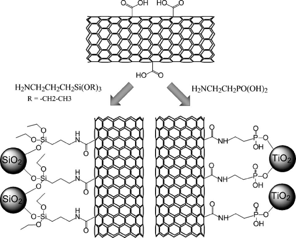 surface functionalization of carbon nanotubes fabrication and applications