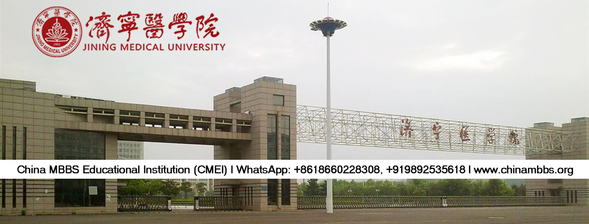 chinese visa application form india mumbai