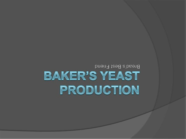 industrial application of cream yeast