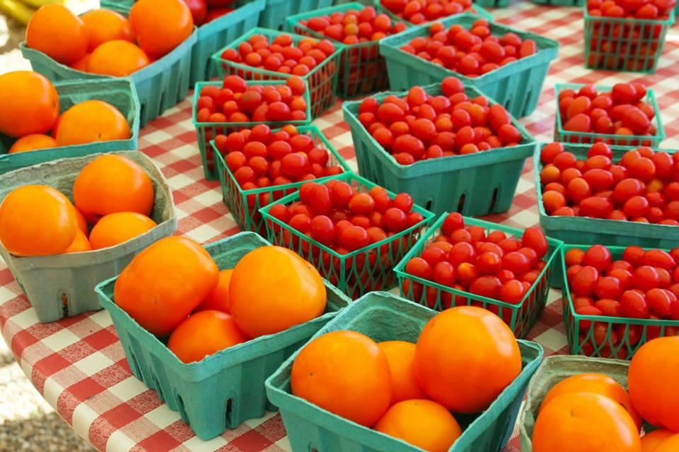 halifax farmers market vendor application