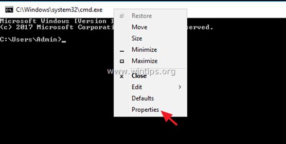 runa 16 bits application in windows 10