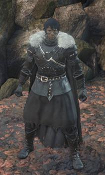 application of armor all during winter