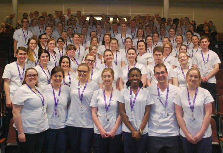 cns nf ca programs practical nursing application process