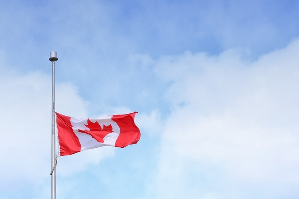 get a consultant to check your canada residency application