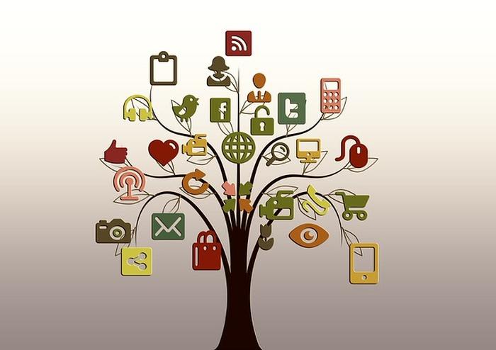 l importance des applications mobiles