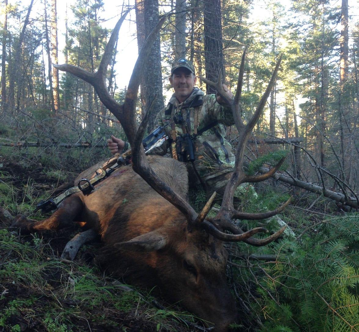 moose draw in new brunswick online application