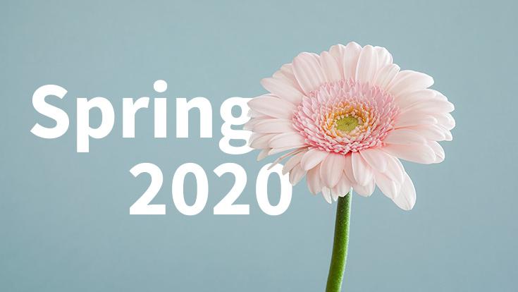 sfu application deadline spring 2019